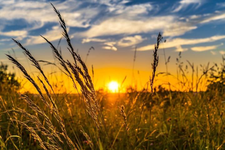 summer-sunset