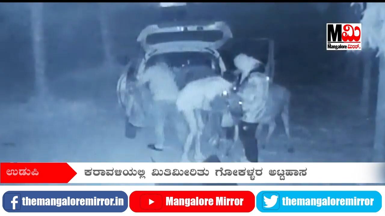 cow theft 2