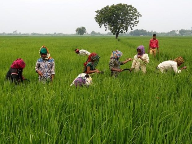 agriculture-reforms